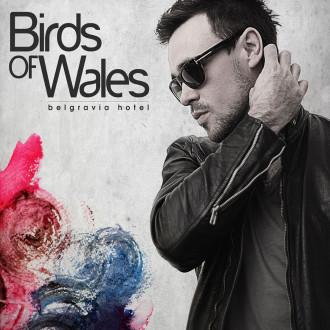 Birds of Wales - Belgravia Hotel